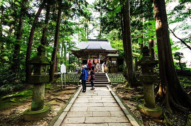 हिडिम्बा देवी मंदिर hidimba devi temple manali